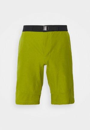 MENS TEKOA SHORTS II - Shorts - avocado