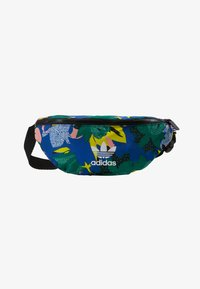 adidas Originals - WAISTBAG - Bum bag - multi-coloured - 1