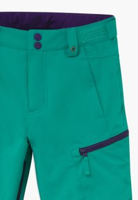 Burton - ELITE CARGO - Snow pants - dynasty green - 3