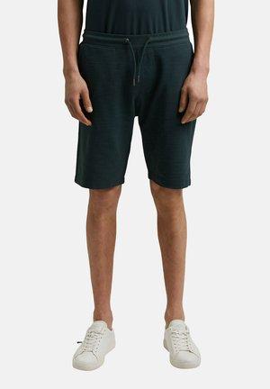 Shorts - teal blue