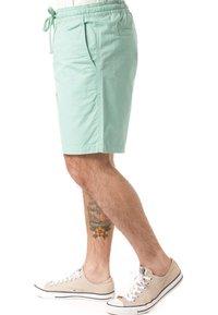 Vans - Shorts - green - 2
