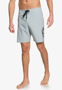 DC Shoes - Sports shorts - neutral gray - 2