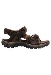 Cat Footwear - GILES - Walking sandals - dark brown - 5