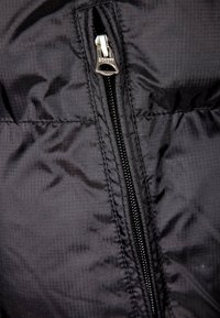 Schott - Winter jacket - black - 3