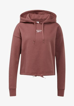 CLASSIC SMALL LOGO FOUNDATION CASUAL HOODIE - Jersey con capucha - red