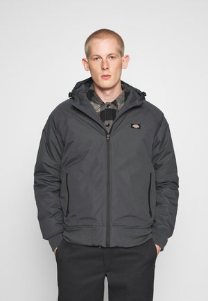 NEW SARPY - Overgangsjakker - charcoal grey