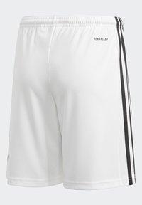 adidas Performance - SQUAD UNISEX - Krótkie spodenki sportowe - white - 4