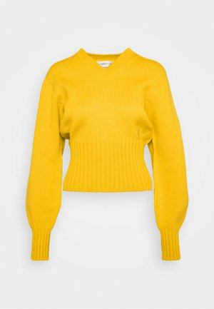 SEAMLESS V NECK JUMPER - Svetr - yellow