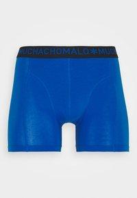 MUCHACHOMALO - BEEHIVE 5 PACK - Onderbroeken - royal blue/red/black - 8