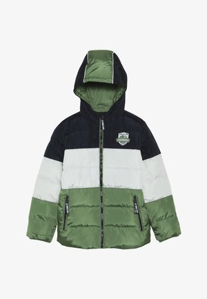 SMALL BOYS JACKET - Winter jacket - willow bough