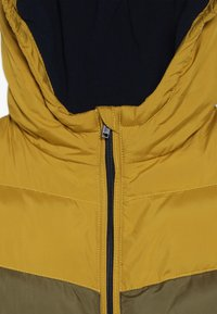 Friboo - Winter jacket - golden palm/military/olive - 4