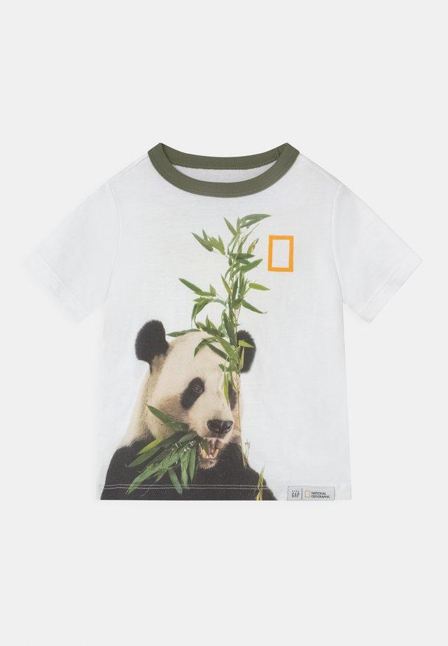 TODDLER BOY NATIONAL GEOGRAPHIC - T-shirt print - optic white