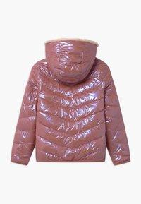 Abercrombie & Fitch - COZY PUFFER - Zimní bunda - pink shine - 1