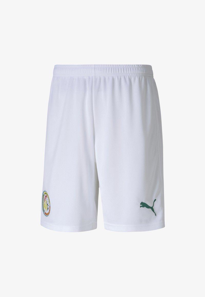 Puma - SENEGAL HOME REPLICA MEN'S FOOTBALL  - Sports shorts -  white-pepper green