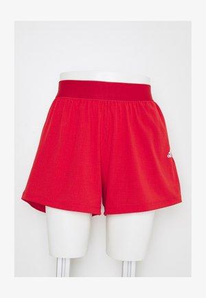 H.RDY SHORT - Korte broeken - vivid red