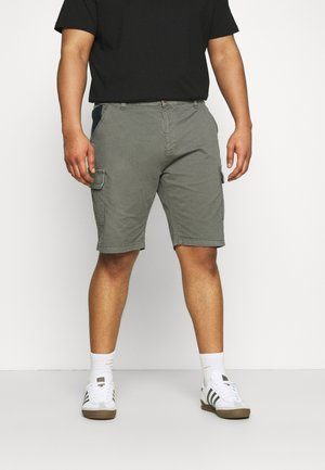 ATHLONE PLUS - Shorts - pewter