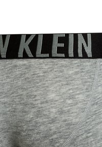 Calvin Klein Underwear - TRUNKS 2 PACK - Pants - grey heather/blue shadow - 3