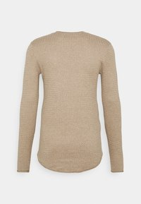 Hollister Co. - Pullover - tan - 1