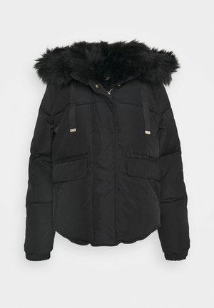 CHUBBY PUFFER - Winter jacket - black