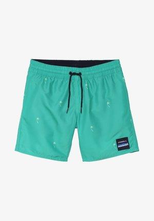 Swimming shorts - mottled green