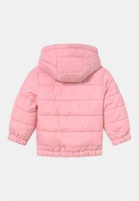 Ellesse - STARS UNISEX - Winterjas - light pink - 1