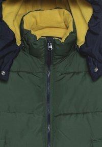 GAP - BOY WARMEST - Winterjas - green gables - 5