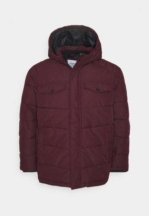 JJREGAN PUFFER  - Winterjas - port royale