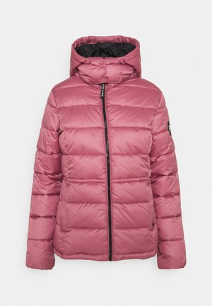 CAMILLE - Winter jacket - washed berry