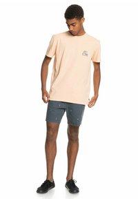 Quiksilver - FRESH TAKE - Print T-shirt - apricot - 1