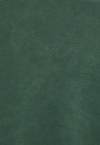 oftt - HEAVYWEIGHT RAGLAN - Collegepaita - green - 6