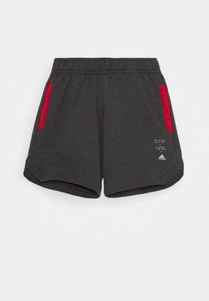 SPACER - Pantalón corto de deporte - dark grey/red