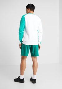 Reebok - OST EPIC GRAPHIC - Sports shorts - green - 2