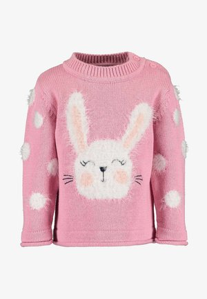BUNNY AND FRIENDS - Trui - MAUVE