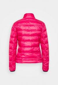 Blauer - GIUBBINI CORTI IMBOTTITO - Bunda zprachového peří - hot pink - 1