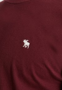 Abercrombie & Fitch - POP ICON CREW - T-shirt basic - port royale - 5