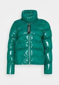 Pinko - MIRCO KABAN - Winter jacket - green - 0