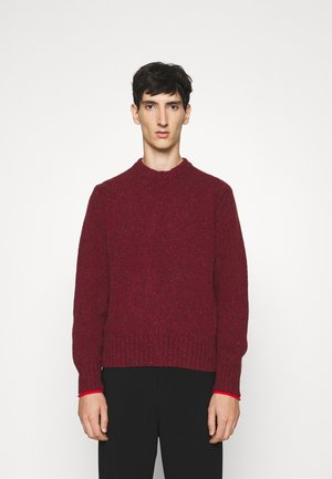 CREW NECK - Pulover - red