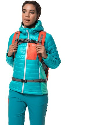 ROUTEBURN  - Winter jacket - dark cyan