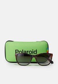 Polaroid - Sluneční brýle - dark havana - 2