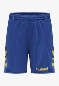 sports yellow/true blue