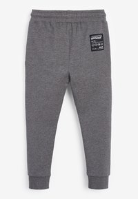 Next - SPRAY ON - Tracksuit bottoms - grey - 1