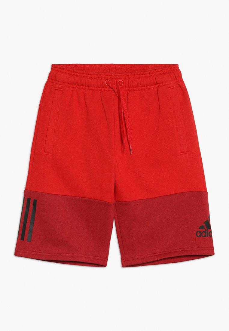 adidas Performance - SID SHORT - Krótkie spodenki sportowe - scarlet/maroon/black