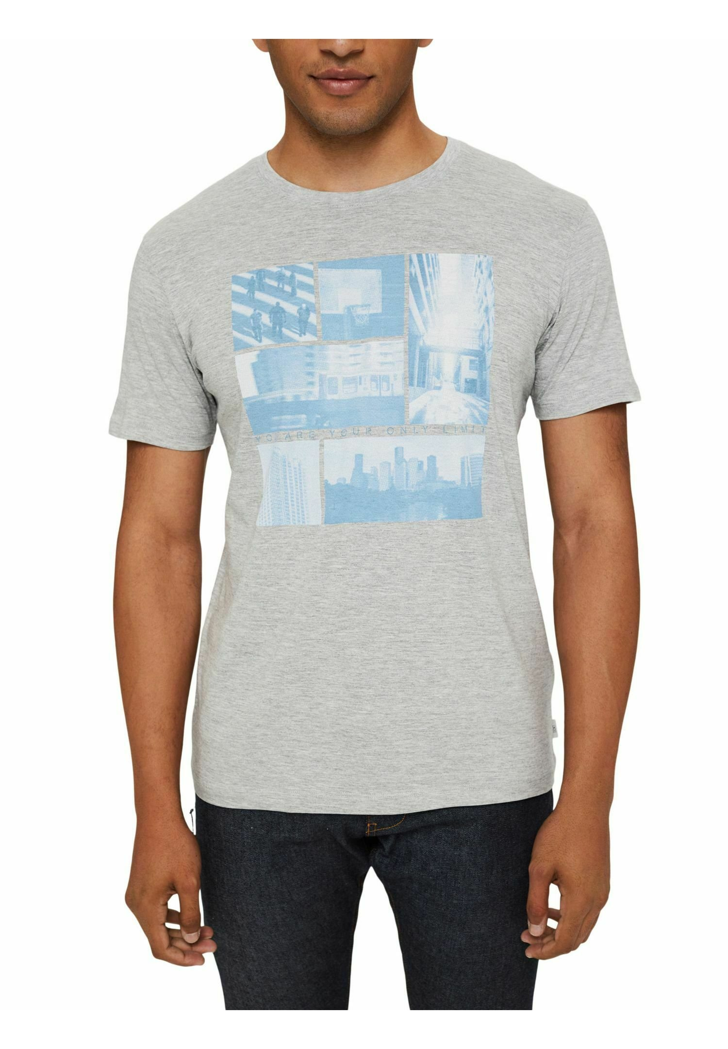 Herren REGULAR FIT - T-Shirt print - light grey