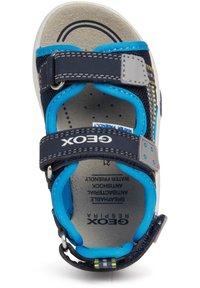 Geox - S. MULTY - Walking sandals - navy - 3
