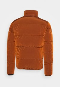 Calvin Klein - CRINKLE  - Winter jacket - brown - 2
