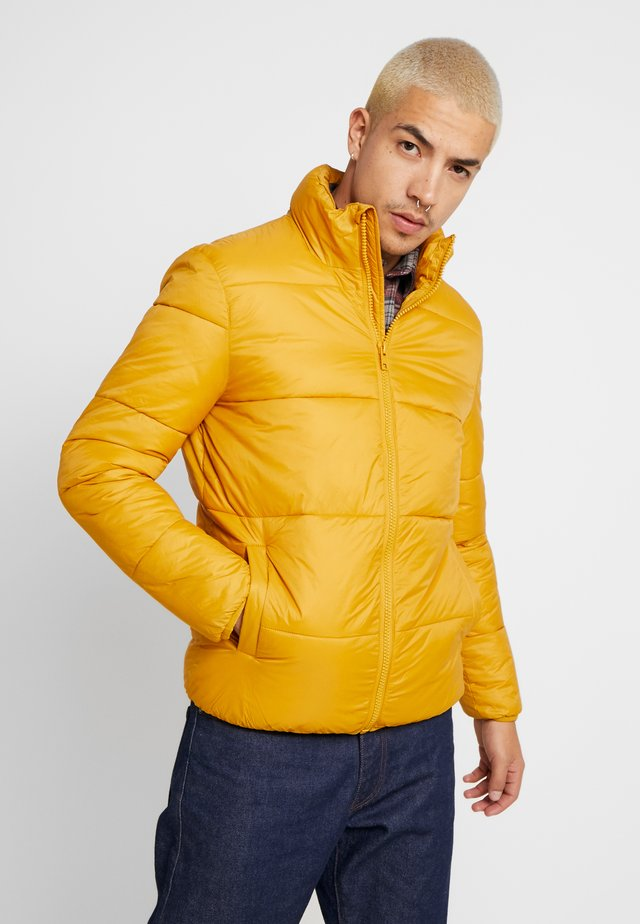 BEN - Winter jacket - dark yellow