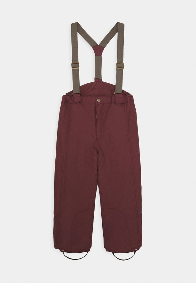WITTE PANTS UNISEX - Ski- & snowboardbukser - catawba grape