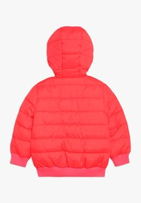 Staccato - KID TEENAGER  - Chaqueta de invierno - neon pink - 1