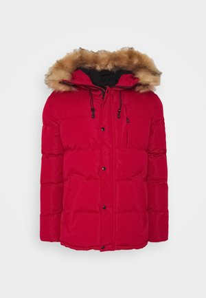 OSHAWA PADDED - Vinterjakker - red