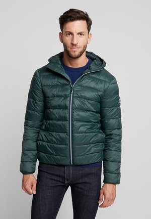 LIGHTWEIGHT HOODED PUFFER JACKET - Light jacket - darkest spruce